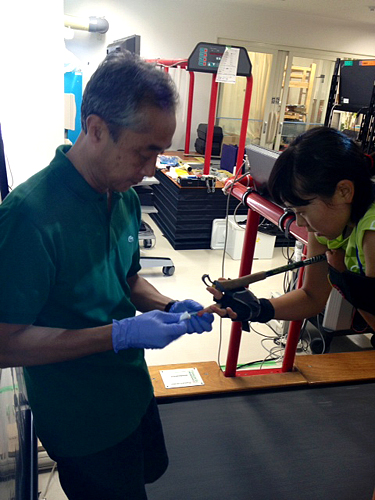 乳酸を測定